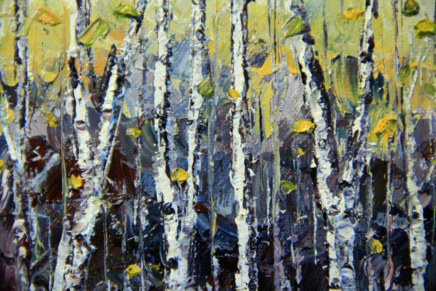 birch tree fine art print